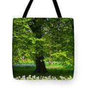 Daffodils And Narcissus Under Tree Tote Bag