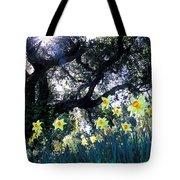 Daffodils And The Oak Tote Bag