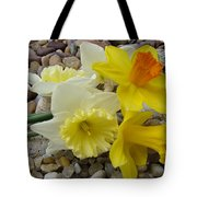 Daffodils Flower Artwork 29 Daffodil Flowers Agate Rock Garden Floral Art Prints Tote Bag