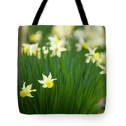 Daffodils In A Bunch Tote Bag