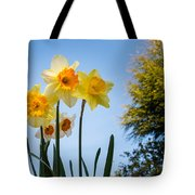 Daffodils In The Sky Tote Bag