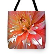 Dahlia Blush Tote Bag