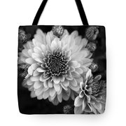Dahlia Burst B/w Tote Bag