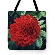 Dahlia Dawn Tote Bag