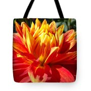 Dahlia Florals Orange Dahlia Flower Art Prints Canvas Tote Bag