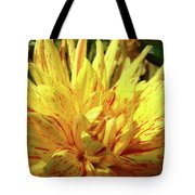 Dahlia Flower Art Collection Giclee Prints Baslee Troutman Tote Bag