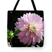 Dahlia Flower Art Pink Dahlias Giclee Art Prints Baslee Troutman Tote Bag