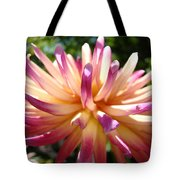 Dahlia Flowers Art Pink Purple Dahlias Giclee Baslee Troutman Tote Bag