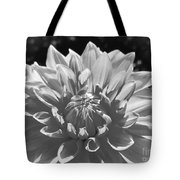 Dahlia In Black And White 2 Tote Bag