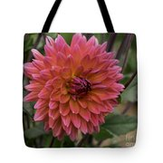Dahlia In Bloom 19 Tote Bag