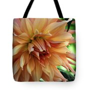 Dahlia In Bloom Tote Bag