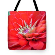 Dahlia Petals Tote Bag