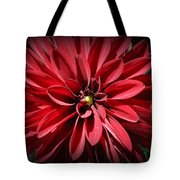 Dahlia Radiant In Red Tote Bag