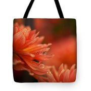 Dahlia Rainshower Tote Bag