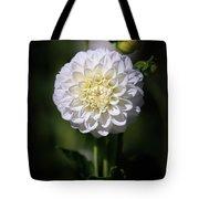 Dahlia White Flowers II Tote Bag