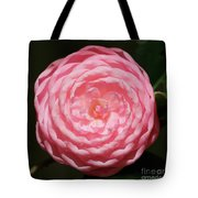 Dainty Pink Camellia Tote Bag
