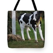 Dairy Cow Stature. Tote Bag