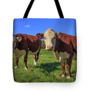 Cattle Andover New Hampshire Tote Bag