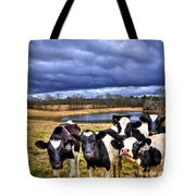 Dairy Heifer Groupies Future Chick-fil-a Starrs Tote Bag