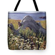 136236-daisies And Driftwood  Tote Bag