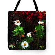 Daisies At The Boathouse Tote Bag