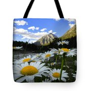 Daisies By Mcdonald Creek With Mt Cannon, Glacier Park Tote Bag