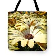 Daisies Flowers Landscape Art Prints Daisy Floral Baslee Troutman Tote Bag