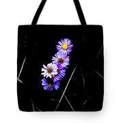 Daisies In Purple Tote Bag by Lorraine Devon Wilke
