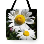 Daisies In The Sunshine Tote Bag