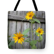 Daisies On The Fence Tote Bag