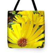 Daisies Summer Garden Art Print Yellow Daisy Baslee Tote Bag
