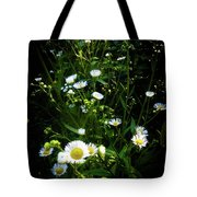 Daisy And Friends Tote Bag