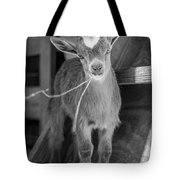 Daisy, Black And White Tote Bag