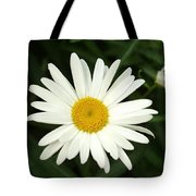 Daisy Days Tote Bag