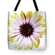 Daisy Decal Deco Tote Bag