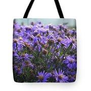 Daisy Dewdrops Tote Bag