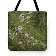 Daisy Family Tote Bag