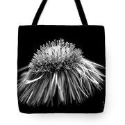 Daisy Flea Bane 0619c Tote Bag
