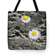 Daisy Fleabane Flowers Tote Bag