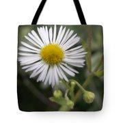 Daisy In White Tote Bag