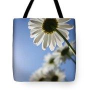 Daisy Parade Tote Bag
