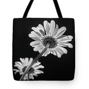 Daisy Reaching For The Sun Tote Bag