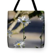 Daisy Soldiers Tote Bag