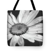 Daisy With Raindrops In Black And White Tote Bag