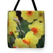 Dallas Daffodils 01 Tote Bag
