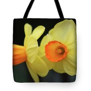 Dallas Daffodils 07 Tote Bag