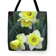 Dallas Daffodils 08 Tote Bag