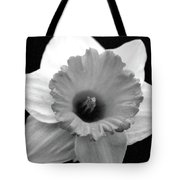 Dallas Daffodils 17 Tote Bag
