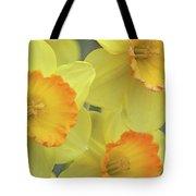 Dallas Daffodils 24 Tote Bag