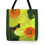 Dallas Daffodils 36 Tote Bag